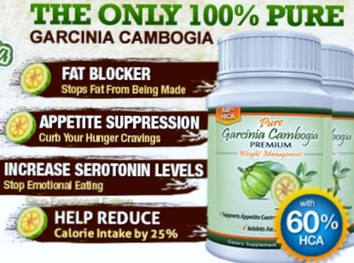 maritzmayer all-natural garcinia cambogia