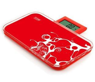 Portable Weight Scales